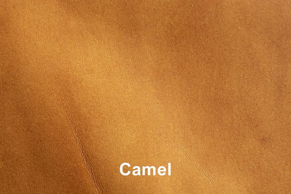 Kleurstaal Vintage Art Camel