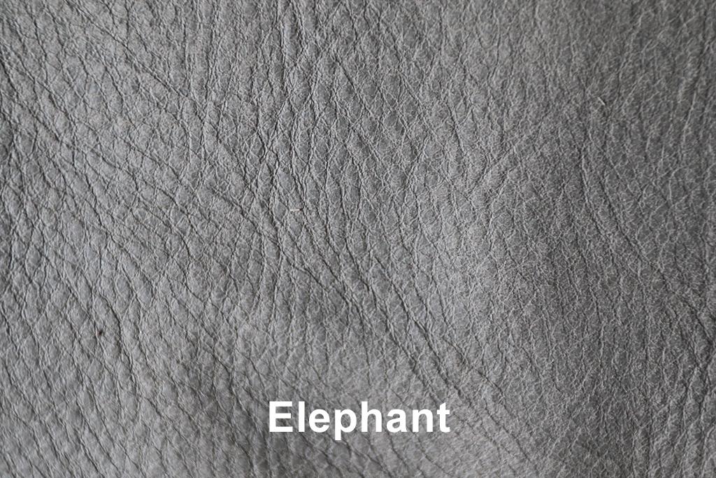 Geschuurd leer Elephant